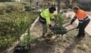 La Diputación de Zaragoza reparte más de 36.000 plantas a 156 municipios de la provincia para decorar sus zonas verdes