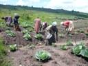La DPZ convoca sus ayudas de cooperación al desarrollo, dotadas con 1 millón de euros, un 13,5% más que el año pasado