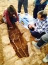 Lobera de Onsella excava su pasado en una necrópolis medieval del siglo X con una tipología de tumbas desconocida hasta ahora