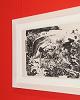 """""""Picasso: Arte y arena"""" repasa la obra gráfica del pintor malagueño y su relación con el mundo taurino"""