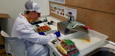 Trece jóvenes hacen prácticas en el medio rural gracias a un proyecto piloto impulsado por la DPZ y la Universidad de Zaragoza